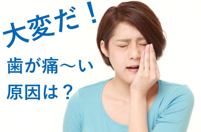歯が痛い 基本編