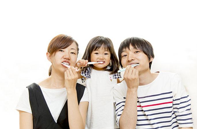 歯医者が本気で選んだ歯ブラシ(大人用)40本厳選!